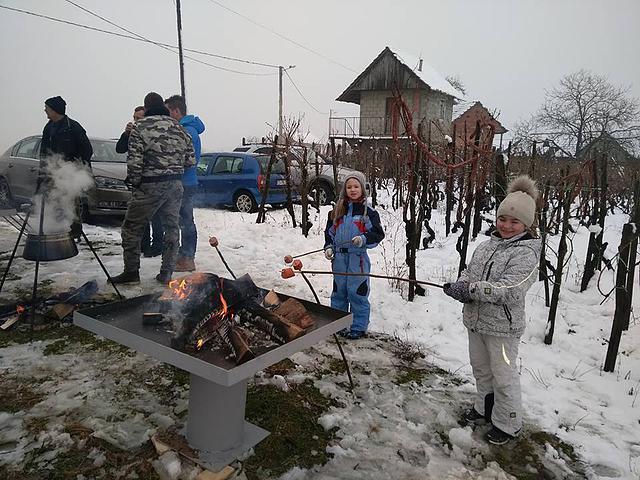 vincekovo_5